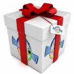 Offrez un cadeau inoubliable avec L'aéroclub de Montélimar porte de Provence